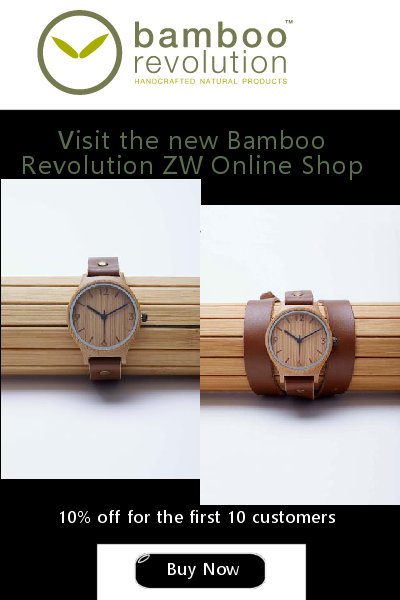 Visit the new Bamboo RevolutionZW Online Shop Now