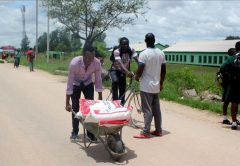 Sam Dondo pushes a wheelbarrow with mealie meal for the orphans PIC: T. NDABAMBI | ZIMBOJAM.COM