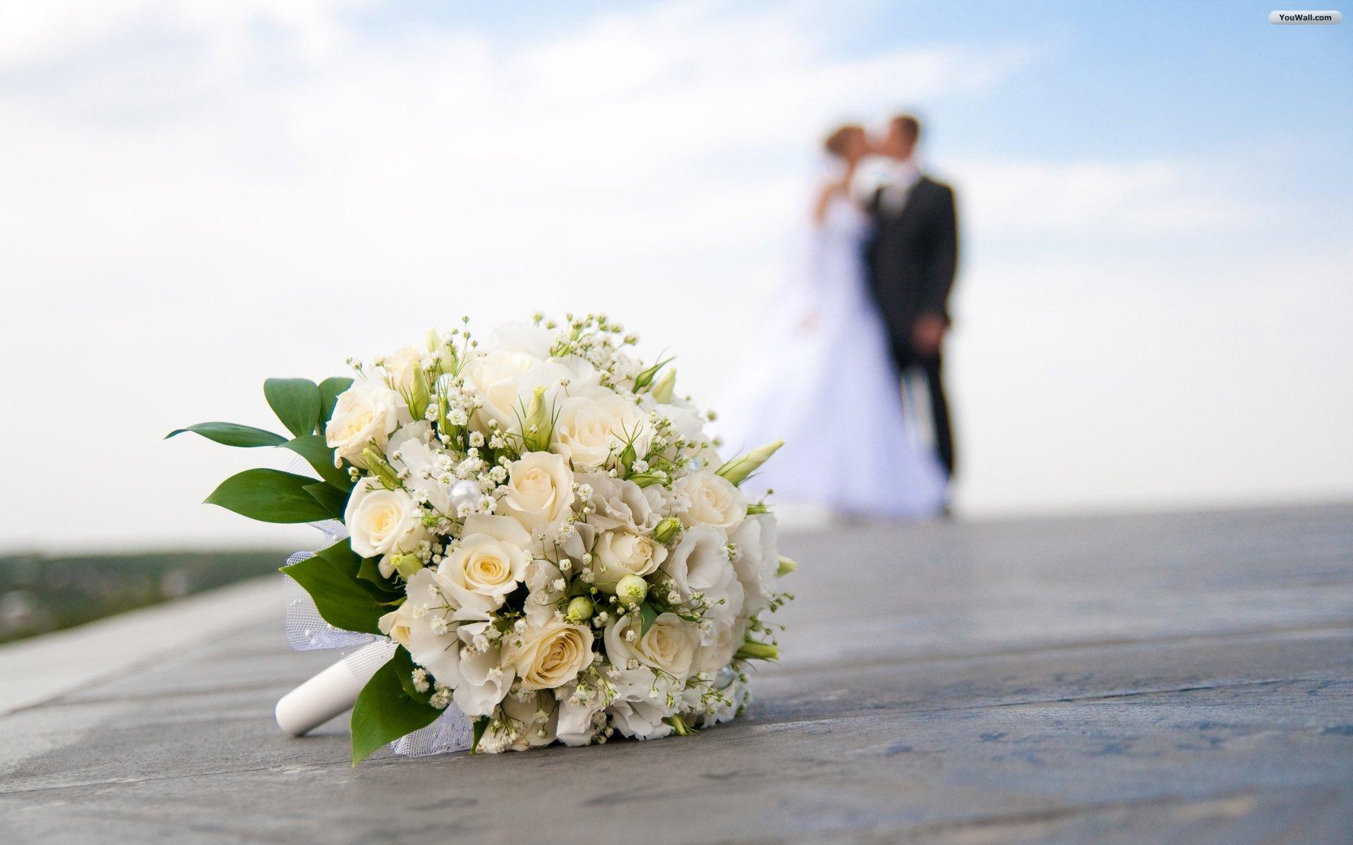 Preps For Third Cresta Wedding Expo On Course Zimbo Jam